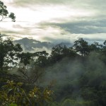 Sunrise over the cloudforest in El Copal, Costa Rica