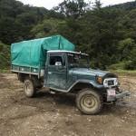 Army surplus Jeep