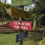 Wilson Botanical Garden