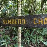 Sendero Chai trailhead
