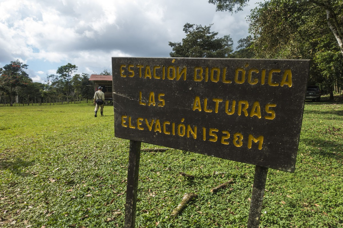 Las Alturas research station