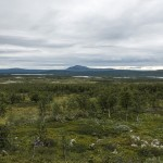 Kungsleden views