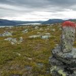 Kungsleden trail markings
