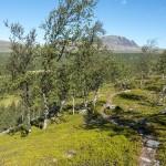 Trail over the moraine ridge