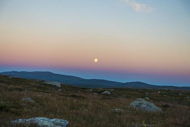 Moonrise at Suonergårsså